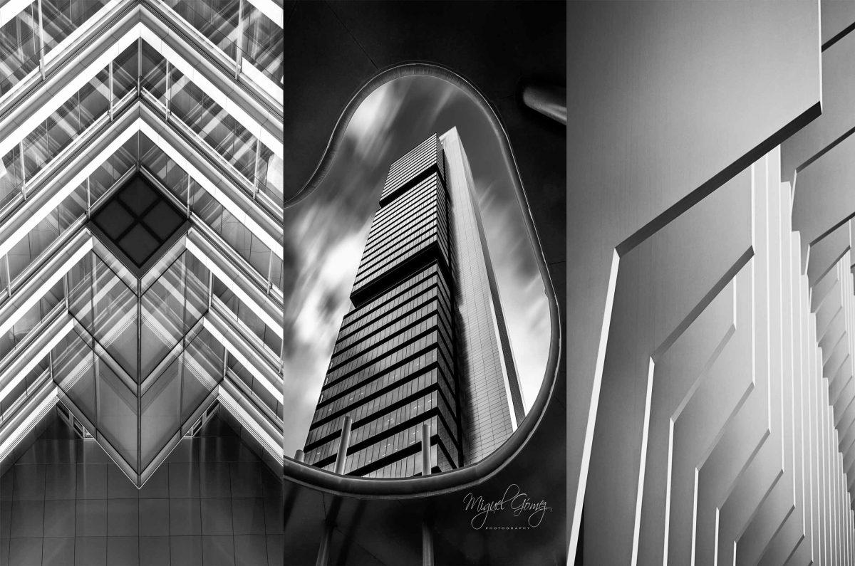 Collage concursos fotográficos FAPA 2018